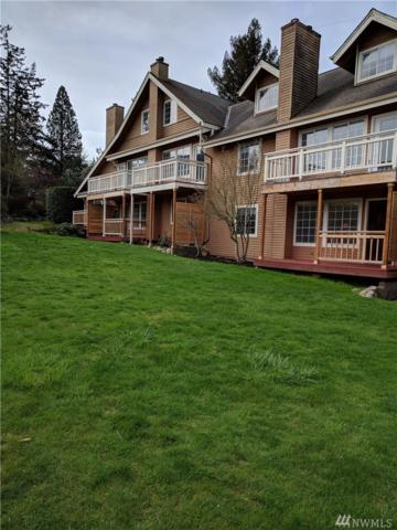 740-unit 7 Guard St #7, Friday Harbor, WA 98250 (#1419234) :: Homes on the Sound