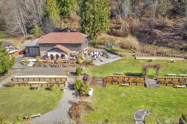 24884 Big Valley Rd NE, Poulsbo, WA 98370 (#1420245) :: Better Homes and Gardens Real Estate McKenzie Group