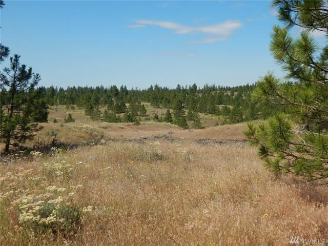 0-Lot 8 Prairie Lane N, Creston, WA 99117 (#1420628) :: Better Properties Lacey