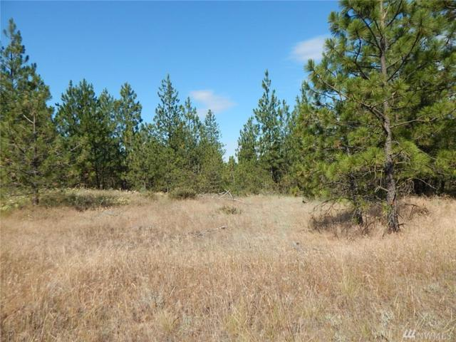 0-Lot 12 Prairie Lane N, Creston, WA 99117 (#1420632) :: Better Properties Lacey