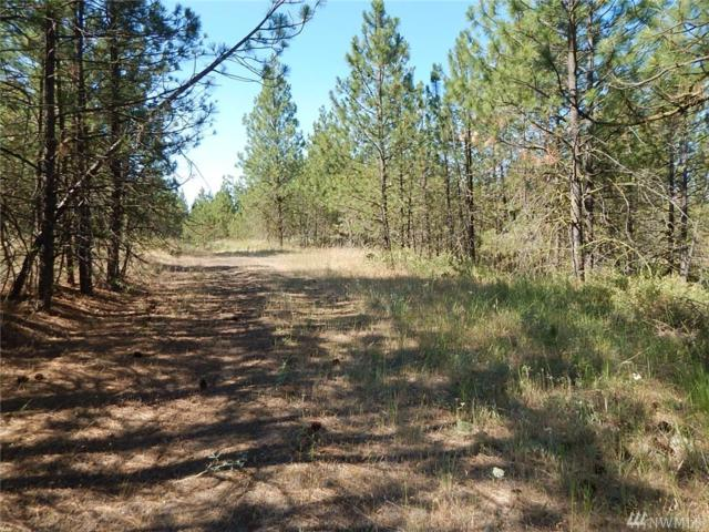 0-Lot 13 Prairie Lane N, Creston, WA 99117 (#1420637) :: Better Properties Lacey