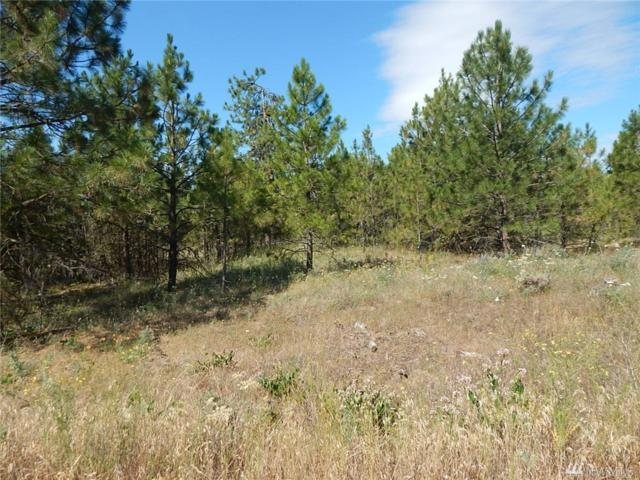 0-Lot 11 Prairie Lane N, Creston, WA 99117 (#1420647) :: Better Properties Lacey