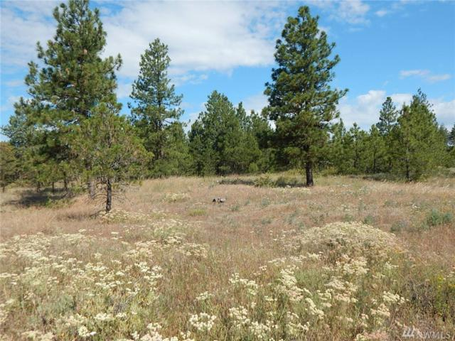 0-Lot 14 Prairie Lane N, Creston, WA 99117 (#1420664) :: Better Properties Lacey