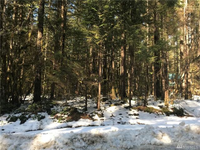 7461 Glacier Springs Drive, Glacier, WA 98244 (#1421015) :: Kimberly Gartland Group
