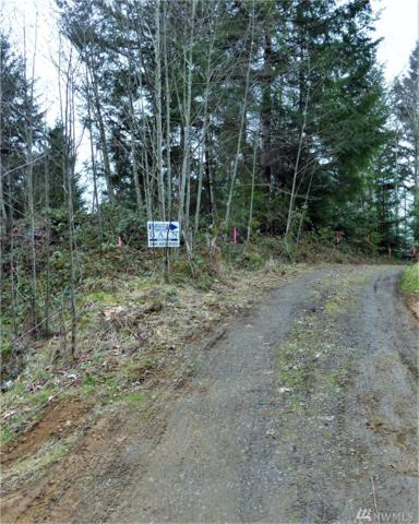 410 Studebaker Spur 1, Castle Rock, WA 98611 (#1421044) :: The Robert Ott Group