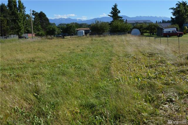 9999 Twin View, Sequim, WA 98382 (#1421197) :: Kimberly Gartland Group