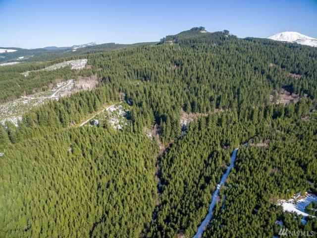 0 Rock Creek Rd, Woodland, WA 98674 (#1422052) :: Crutcher Dennis - My Puget Sound Homes