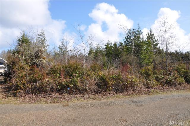 0-Lot 16 W Lane, Ocean Park, WA 98640 (#1422894) :: The Robert Ott Group