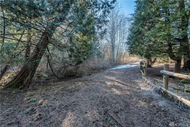 4407 Aldrich Rd, Bellingham, WA 98226 (#1425381) :: Ben Kinney Real Estate Team