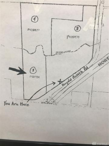 5950 Hoogdal Branch Rd, Sedro Woolley, WA 98284 (#1425617) :: Mike & Sandi Nelson Real Estate