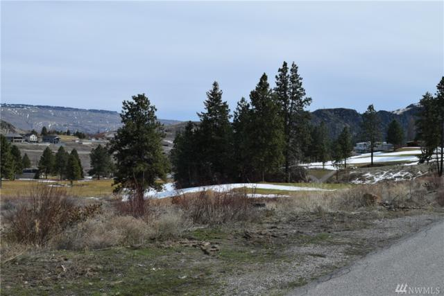 53 Golf Course Dr, Pateros, WA 98846 (#1428139) :: Better Properties Lacey