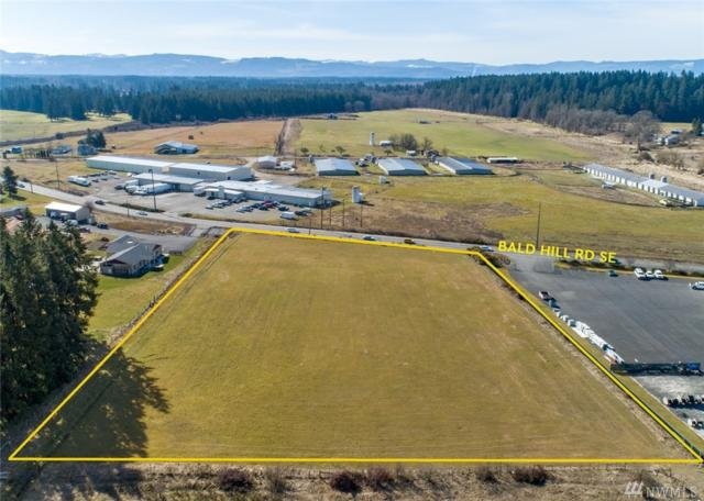 10800 Bald Hills Rd SE, Yelm, WA 98597 (#1428851) :: Northwest Home Team Realty, LLC