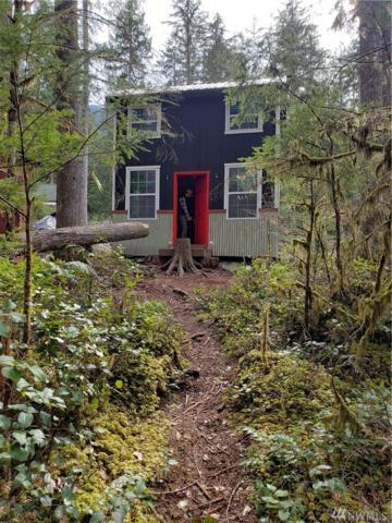 63420 W Cascade Way, Marblemount, WA 98267 (#1428895) :: Kimberly Gartland Group