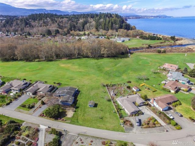 9999 Strait View Dr, Port Angeles, WA 98362 (#1431227) :: Ben Kinney Real Estate Team