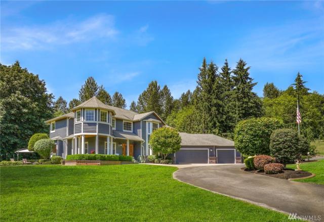 3210 219th Ave SE, Snohomish, WA 98290 (#1431796) :: Ben Kinney Real Estate Team