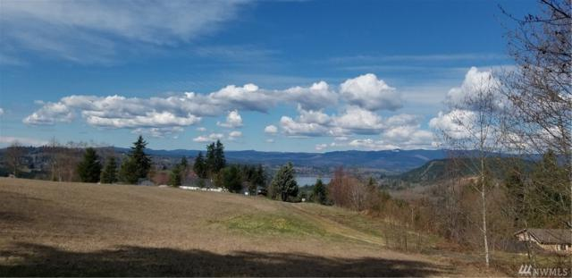 115 Segura Ridge Rd, Mossyrock, WA 98564 (#1432048) :: Mike & Sandi Nelson Real Estate
