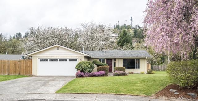 19913 Lei Garden Rd, Burlington, WA 98233 (#1436950) :: McAuley Homes