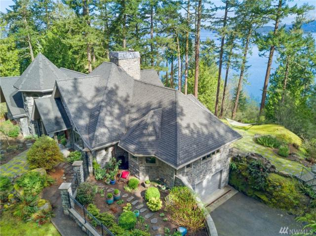 764 Big Foot Rd, Friday Harbor, WA 98250 (#1437935) :: Ben Kinney Real Estate Team