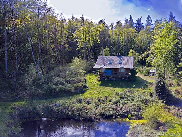 1022 Carl Johnson Rd, Quilcene, WA 98376 (#1438629) :: Record Real Estate