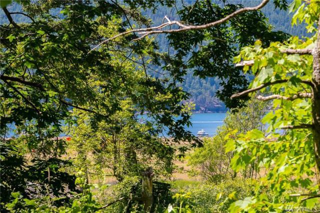104 Eliza Island, Bellingham, WA 98226 (#1440631) :: Kimberly Gartland Group