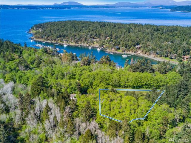 0-Lot 14 Cattle Point Rd, San Juan Island, WA 98250 (#1443830) :: Ben Kinney Real Estate Team
