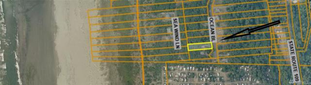 192 Ocean Blvd, Ocean City, WA 98569 (#1444411) :: Ben Kinney Real Estate Team