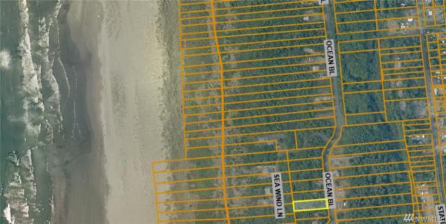 186 Ocean Blvd, Ocean City, WA 98569 (#1444419) :: Ben Kinney Real Estate Team