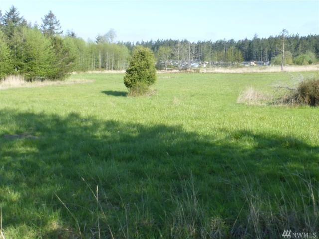 87 Weeks Rd, Lopez Island, WA 98261 (#1445029) :: Real Estate Solutions Group