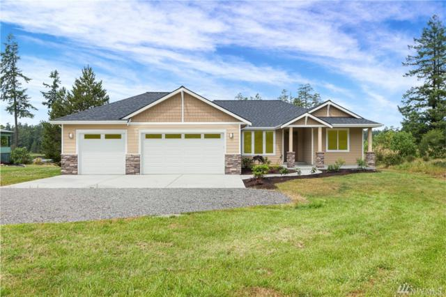 437 Woodpecker Lane, San Juan Island, WA 98250 (#1447437) :: Mosaic Home Group