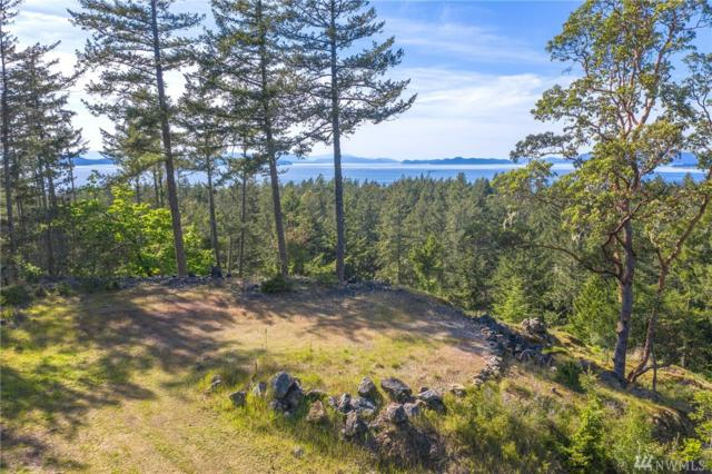 550 Dancing Deer Dr, Orcas Island, WA 98245 (#1447867) :: Homes on the Sound
