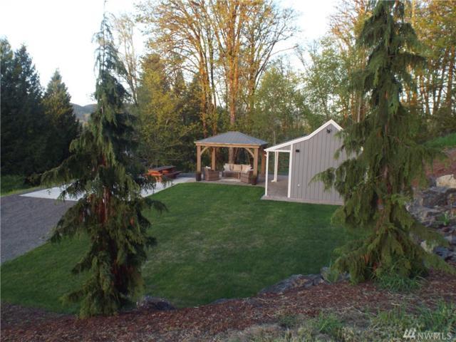 221 Lakeview Dr, Mossyrock, WA 98564 (#1448103) :: Kimberly Gartland Group