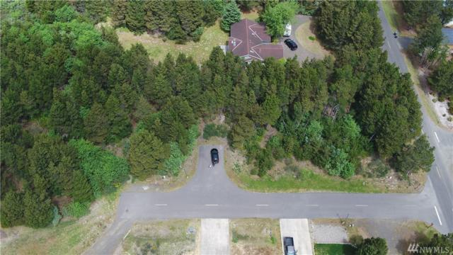 0-Lot 1 Driftwood Lane, Westport, WA 98595 (#1448787) :: Record Real Estate