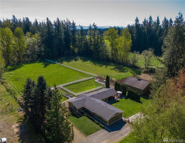 8612 Stein Rd, Custer, WA 98240 (#1449463) :: Ben Kinney Real Estate Team