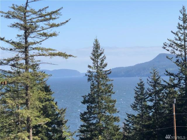 241 Geer Lane, Orcas Island, WA 98245 (#1451075) :: Real Estate Solutions Group