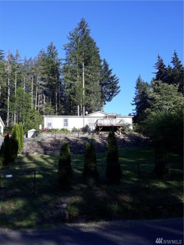 4581 E Rasor Rd W, Belfair, WA 98528 (#1451472) :: Kimberly Gartland Group