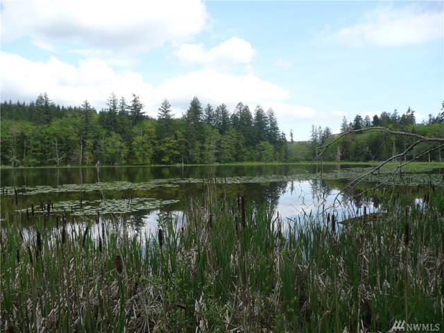 999 Rice Lake Rd, Quilcene, WA 98376 (#1451991) :: Northern Key Team