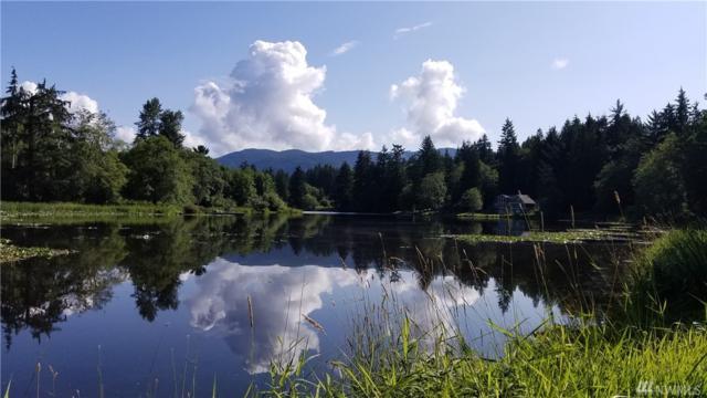 0 Lakeside Dr, Sedro Woolley, WA 98284 (#1452421) :: Ben Kinney Real Estate Team