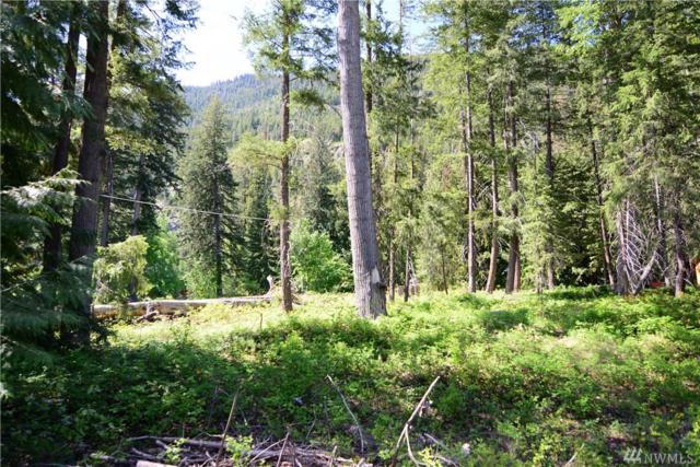 6 Misty Cir, Mazama, WA 98833 (#1453541) :: Canterwood Real Estate Team