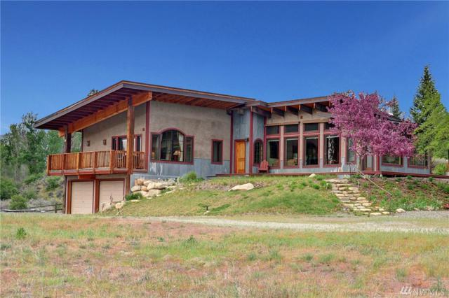 22 Osprey Lane, Twisp, WA 98856 (#1455775) :: Kimberly Gartland Group