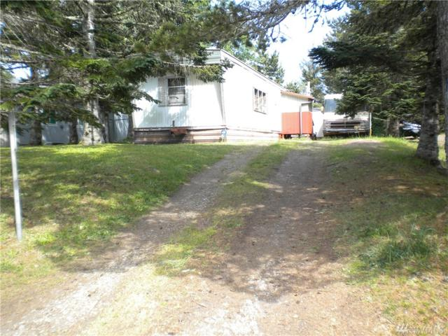 22608 V St, Ocean Park, WA 98640 (#1456353) :: Homes on the Sound
