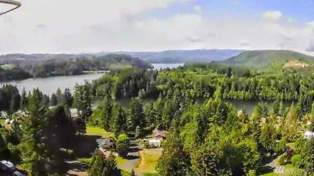 188 Lakeview Dr, Mossyrock, WA 98564 (#1456756) :: Crutcher Dennis - My Puget Sound Homes