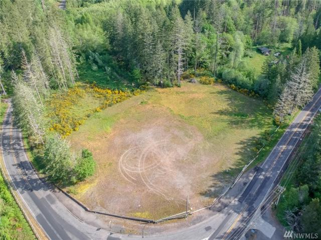 0 Xxx Wright Bliss Rd NW, Vaughn, WA 98394 (#1456883) :: Real Estate Solutions Group