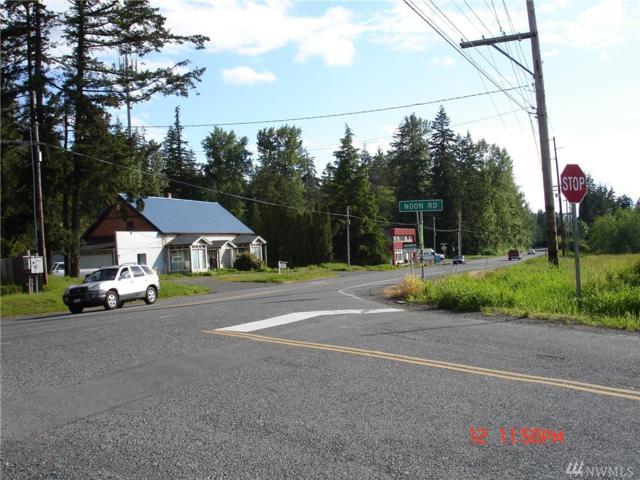 1695 Mt. Baker Hwy, Bellingham, WA 98226 (#1457199) :: Crutcher Dennis - My Puget Sound Homes