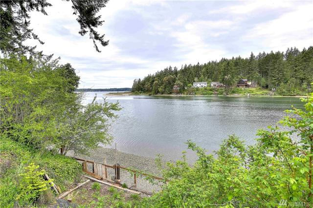 11502 186th Ave NW, Gig Harbor, WA 98329 (#1458080) :: Platinum Real Estate Partners