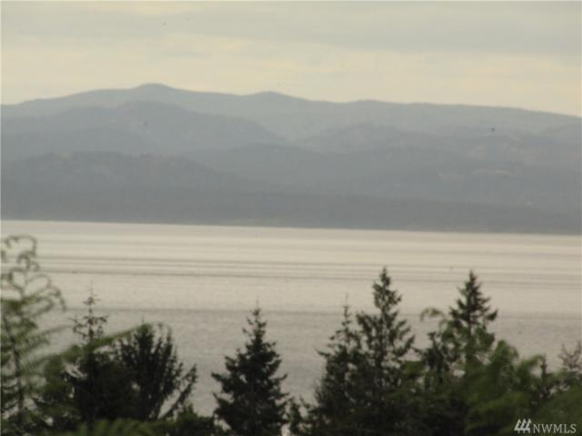 0 Elwha Bluffs Rd, Port Angeles, WA 98363 (#1458618) :: The Kendra Todd Group at Keller Williams