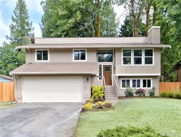 17821 25th Dr SE, Bothell, WA 98012 (#1458678) :: Real Estate Solutions Group