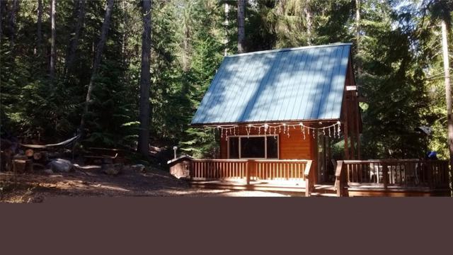 15869 Cedar Brae Rd, Leavenworth, WA 98826 (MLS #1460569) :: Nick McLean Real Estate Group