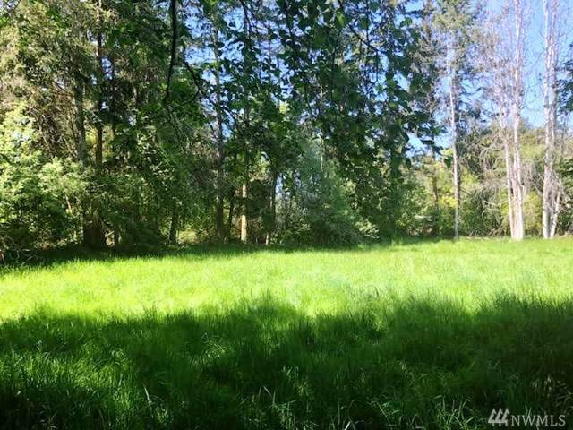 999 Bay View Lot 21 St, Sequim, WA 98382 (#1460656) :: The Kendra Todd Group at Keller Williams