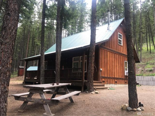 35 Sky Ranch Rd, Twisp, WA 98856 (#1464059) :: Better Properties Lacey
