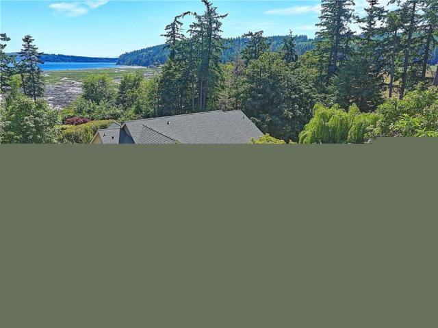 253 Sukyma Lane, Camano Island, WA 98282 (#1468196) :: McAuley Homes